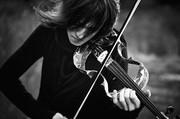 dear violin