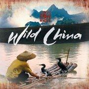 纪录片《美丽中国》原声音乐