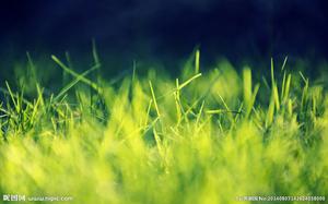 【冥想静读】精神的伊甸园,超越时空的洞见