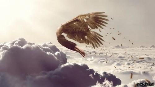 Icarus (气势恢宏)