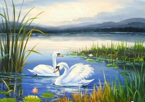 天鹅湖(水晶钢琴)