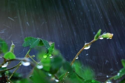 细雨有声 ( 夜色钢琴曲 )