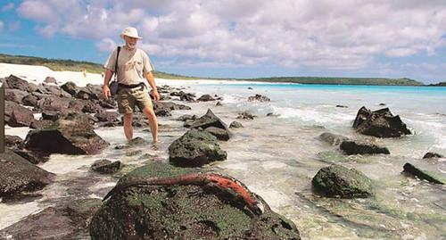 加拉巴哥群岛,这个群岛在 2015年被美国旅游杂志 travel leisure,评