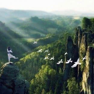 剑踪-琉璃仙境