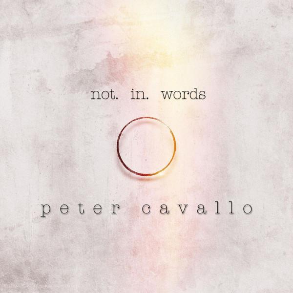 Peter Cavallo-Not in Words 无言 2019