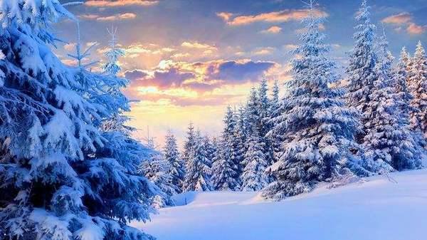 回忆像冬日那样暖