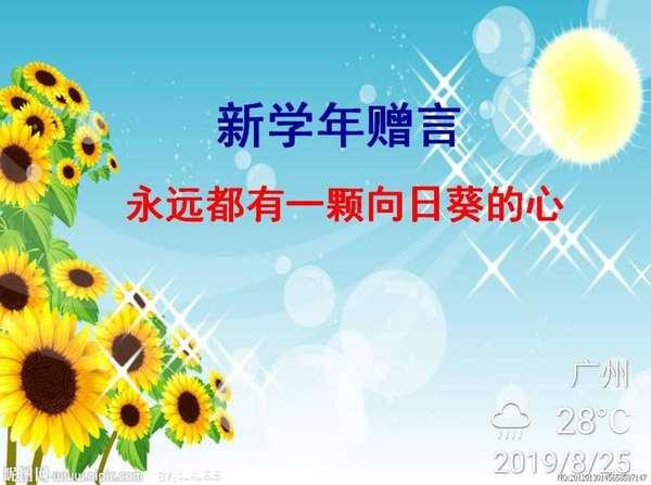 向日葵的季节