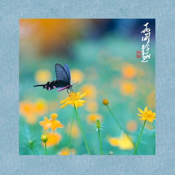 NO.2好聽的中國古典音樂 古箏音樂 古琴音樂 笛子音樂 心靈音樂 瑜伽音樂 冥想音樂