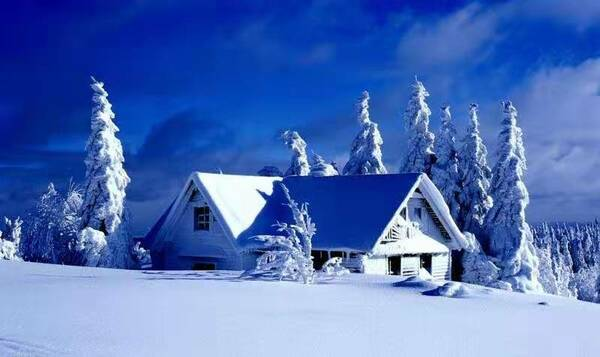在最寒冷的冬天,遇见最温暖的你