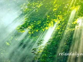 N°104 - Light Instrumental Music - morning, positive, uplifting