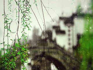 清明雨上(FRANKOWOBootleg)