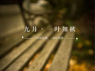 九月,一叶知秋