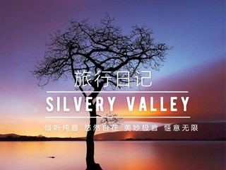 silvery valley