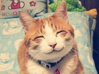 你笑起来真好看-竹笛