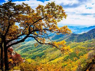 秋景(Autumn Landscapes)